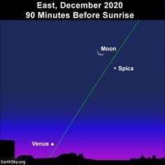 December 2020 guide to the bright planets | Astronomy Essentials | EarthSky Visible Planets, Venus, Brightest Planet, Before Sunrise, Beautiful Moon, Day Book, New Tricks, Solar System, Night Skies