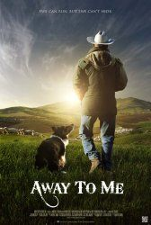 Movie Review: 'Away To Me' Is A Must Watch! | Border Collie Fan Club