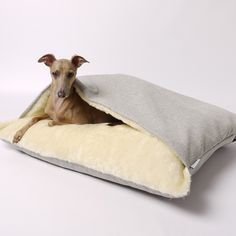 Charley Chau LUXURY DOG SNUGGLE BED | £100 GBP, Lrg (100x80cm) + Liner £20 | Slate, Linen, Pewter, Havana. For dogs that love to burrow under blankets. Beautifully soft fleece lined envelope design. Neutral palette works beautifully in a contemporary interior. Modern weave fabric is upholstery grade for style & durability. Filled w/insulating hollow fibre which holds its shape, even after washing. Removable, washable cover & mattress. Optional waterproof mattress cover.