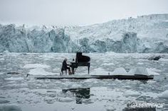 Image result for greenpeace arctic
