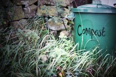 Jane Says: It's Time to Start Composting | TakePart