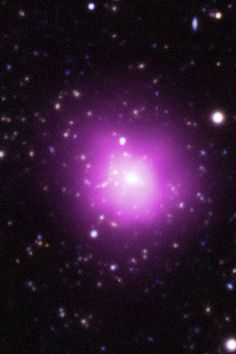 The Phoenix Cluster (SPT-CL J2344-4243) is a massive, type I galaxy cluster located in the southern constellation Phoenix. Most of the mass of the Phoenix Cluster is in the form of dark matter. Space telescopes show that the central elliptical galaxy has been converting material to stars at an exceptionally astonishing rate, and contains one of the most massive black holes known in the universe. Phoenix Cluster is also producing more X-rays than any other known massive cluster.
