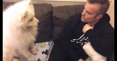 Samoyed Puppy Is The Sweetest! Do You Want A Fluffy Puppy Hug? (I Know I Do!)   The Animal Rescue Site Blog