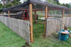 Our duck and chicken compound made with recycled pallets, wire fencing, greenhouse cloth cover, and lumber. The only thing we had to buy was the posts and 2 x 4's.