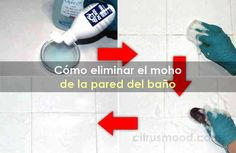Cómo eliminar el moho de la pared del baño Sweet Home, Personal Care, Good Things, Ideas, Molde, Removing Mildew Stains, Amigurumi Doll, Household Cleaning Tips, Cleaning Hacks
