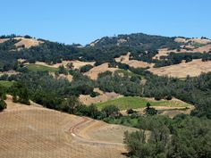 A Storyteller and a Sustainable Winery, Alexander Valley, California