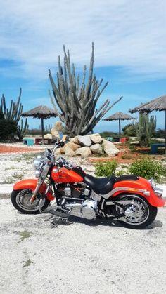 My own bike, Harley Davidson 2012. Aruba