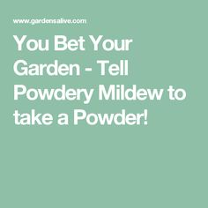 You Bet Your Garden - Tell Powdery Mildew to take a Powder!