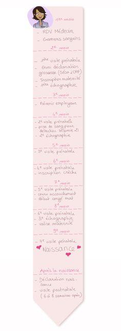 demarches administratives pendant la grossesse