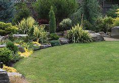 19 Backyard Landscape Design Ideas to inspire you. Various landscaping designs, tree, flower & vegetable gardens. Backyard Landscape Design Ideas here. Large Backyard Landscaping, Natural Landscaping, Small Garden Plans, Rock Garden Design, Evergreen Garden, Garden Planning, Garden Inspiration, Landscape Design, Houses