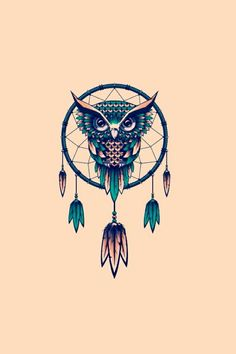 An owl but also a dream catcher together