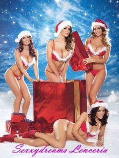 Feliz Navidad 2014... mis sexys amigos