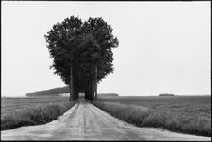 Henri Cartier-Bresson. The Geometry of the Moment