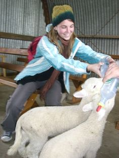 The time I fed little baby sheep in New Zealand. ( I have fed lots of baby lambs but not in New Zealand!)