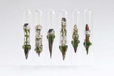 They say that beauty is in the eye of the beholder and the floating test tube art that Dutch artist Rosa de Jong creates is both amazing and truly beautiful. Test Tube Crafts, Minis, Behance, Polymer Clay Miniatures, Dutch Artists, Diy Arts And Crafts, Wire Art, Paper Art, Sculptures
