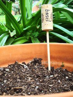 Absolutně jednoduché - jmenovky z korkových zátek! Wine cork plant markers- simple and great!