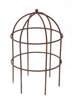 Bird Cage Plant Supports - Steel Bird Cage Garden Plant Supports