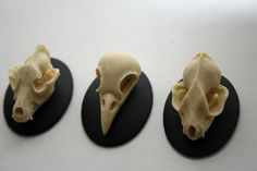 Bat Wolf Bird Skull Cameo Cabs Resin Cabochon Taxidermy Animal Steampunk Gothic Goth Skull Black Ivory 40x30mm CHOOSE 1 PIECE by LeanderOrnaments on Etsy