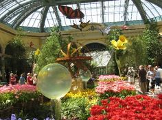 The Conservatory at Bellagio. This is one of the most beautiful places to take visitors.