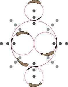 9 Gleichgewichts-Übungen mit dem Meister-Kreis