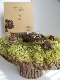 Rustic Moss Table Number Stand by MonkeysOnTheRoof on Etsy, $47.00