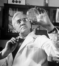Alexander Fleming discovered a bacteria- destroying mold that he called penicillin in 1928. This discovery changed the world of medicines by introducing the ...