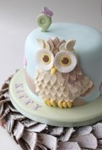 Cute owl cake.  I wish I could do this!