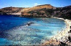 Honauma Bay - Oahu, HI   Warm Beaches! Snorkeling!