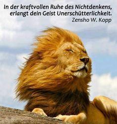 zen sprüche Sprüche Und Zitate Des Zen | sprechen sie deutsch zen sprüche