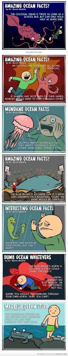 Interesting Ocean Facts