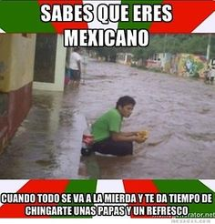 eres-mexicano-meme-chistosa.jpg (368×385)