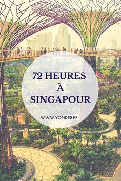 72 hours in Singapore: between essential places and confidential addresses … – Travel and Tourism Trends 2019 Travel And Tourism, Asia Travel, Travel Destinations, Marina Bay Sands, Travel Around The World, Around The Worlds, Singapore Travel, Cheap Hotels, Short Trip