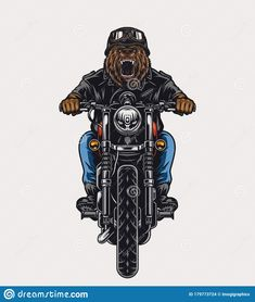 Colorful Template Of Angry Bear Head Biker Stock Vector - Illustration of print, isolated: 179773724 Card Costume, Angry Bear, Bear Vector, Bear Head, Eagle Head, Funny Character, Graphic Prints, Biker, Illustration Art