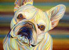 Bulldog by Kate Hoyer Dog Pop Art, French Bulldog Art, Dog Leash Holder, Dog Illustration, Dog Paintings, Dog Portraits, Dog Breeds, Lion Sculpture, Artwork