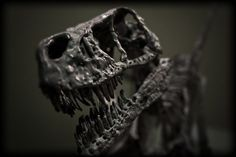 The Sixth Great Extinction: A Silent Extermination | National Geographic (blogs)