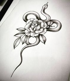 "50 Likes, 2 Comments - Laura Zuffo Drawings&Tattoos (@laurazuffottt) on Instagram: ""#drawing #drawingfortattoo #sketch #snake #snakesketch #rose #roseandsnake #roseandsnaketattoo…"""