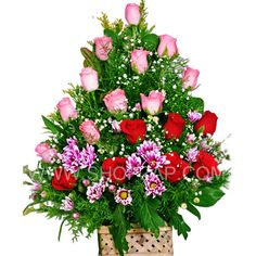 Flowers Basket are generally looked upon a flowers of sweet thoughts and gentle emotions. Pink roses are expressed by their lovely color is happiness and joy. Red roses expresses the throbbing heart of new love.Surprise your dear ones with these flowers through Shop2Hyderabad.com. Red and pink roses are overwhelming surprise for your special mom and it would be unforgettable moments in your family.