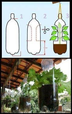 Horta suspensa + reciclagem = Alimentação orgânica para sua família.