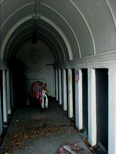 Shadow person at Tomb of The Army of Tennessee in Metairie Cemetery, Metairie, Louisiana - by Barry Mason.