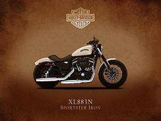 Harley Davidson Framed Prints - Harley Davidson XL883N Framed Print by Mark Rogan