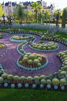 Cactus garden art...love the design. Could use any plants.  #flowers #landscaping #gardening