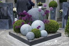 Nowoczesny ogród Modern Landscaping, Front Yard Landscaping, Landscaping Ideas, Diy Garden Decor, Garden Art, Topiary Garden, Small Gardens, Outdoor Gardens, Garden Forum