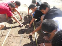 Fifth graders measuring and planting wheat in one of our long beds.