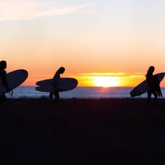 Off into the sunset in search of waves...