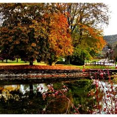 Discovered by Tiffany Allington: Lower Little York Lake in Upstate NY. Homer, NY