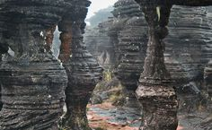 Labirinto em Monte Roraima                                                                                                                                                                                 Más Countries In America, Largest Countries, Monte Roraima, Amazon Rainforest, Natural Scenery, Rock Formations, Vacation Places, Geology, Beautiful Beaches