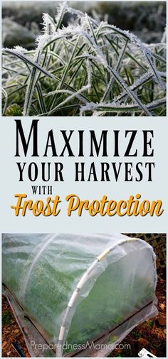 Learn how to use row covers, cloches, cold frames and hoop houses for frost protection in your fall garden. Maximize the harvest with these frugal ideas | PreparednessMama.com