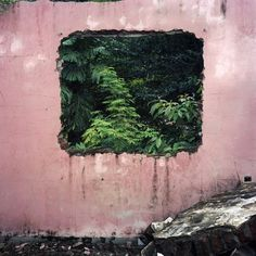 H by Tomas Cambas. This pink and green picture would look amazing against a dark wall Colourful Photography, Color Photography, Landscape Photography, Rise Art, Green Pictures, Buy Art Online, Contemporary Artwork, Pink Walls, Color Theory