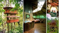 A Sustainable Treehouse Community in the South Pacific Region of Costa Rica