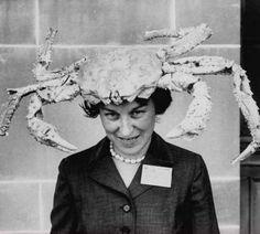 crab hat!